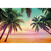 "Wall Mural, Photo Wallpaper MIAMI 12'1""x8'4"" Beach Palms Florida sunset HDR Caribbean"