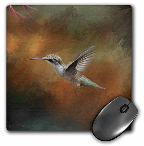 3Drose 8 X 8 X 0.25 Inches Mouse Pad Hummingbird Old Master Fine Art Floral III (mp_79486_1)
