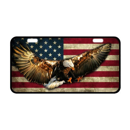 "6.1"" X 11.8"" Eagle and American Usa Flag Art Painting, used for sale  Delivered anywhere in USA"