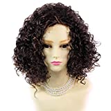 Wiwigs ® SEXY Wild Untamed Brown & Red Short Curly Ladies Wig