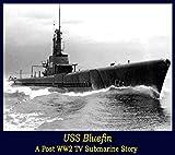 USS Bluefin
