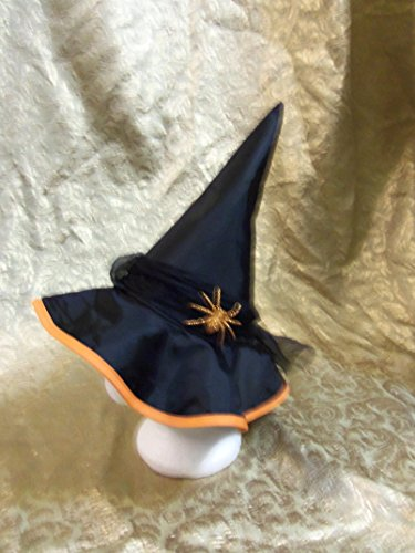 Dani Witches Hat (Geany Costume)