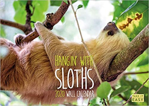 Télécharger Hangin' with Sloths 2020 Calendar: The funny sloths calendar collection livres EPUB