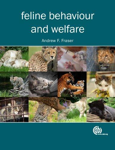 Feline Behaviour and Welfare ()