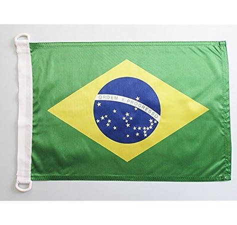 AZ FLAG Bandera Nautica de Brasil 45x30cm - Pabellón de conveniencia BRASILEÑA 30 x 45 cm Anillos: Amazon.es: Hogar