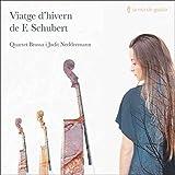 Viatge dhivern de F. Schubert by Quartet Brossa i Judit Neddermann