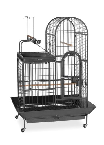 Prevue Pet Products BPV3159 Double Roof Bird Cage with Playtop, 36-1/2 by 27-1/4-Inch, Black