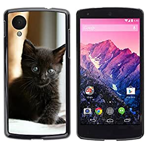Hot Style Cell Phone PC Hard Case Cover // V0000922 Cat Kitty Animal Pattern // LG NEXUS 5
