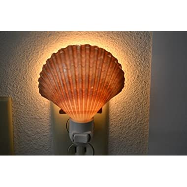 Yellow Mexican Cup Sea Shell Night Light Bathroom Kitchen