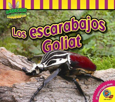 Download Los Escarabajos Goliat (Insectos Fascinantes) (Spanish Edition) PDF