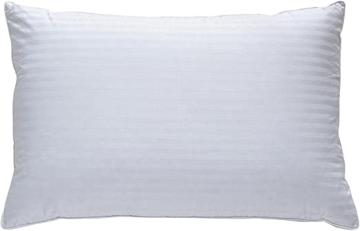 Best Pillow.Amazon Com Classic Brands Plush Down Pillow Best Pillow For