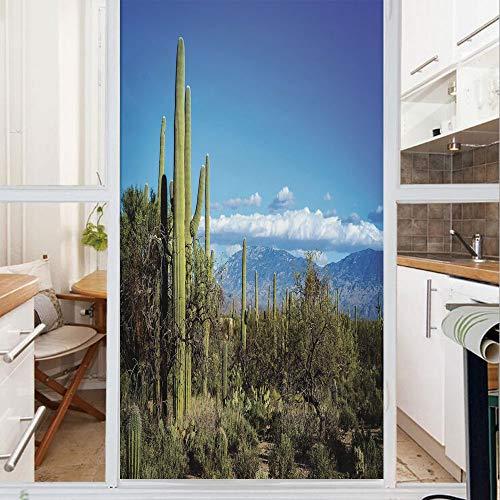 Best Phoenix Bronze Sprays - Decorative Window Film,No Glue Frosted Privacy