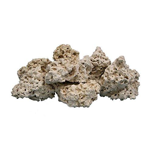 Worldwide Imports AWW0855 Atlantic Coral Rock, 40-Pound