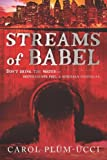 Front cover for the book Streams of Babel by Carol Plum-Ucci