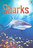 Sharks, Catriona Clarke, 0794515819