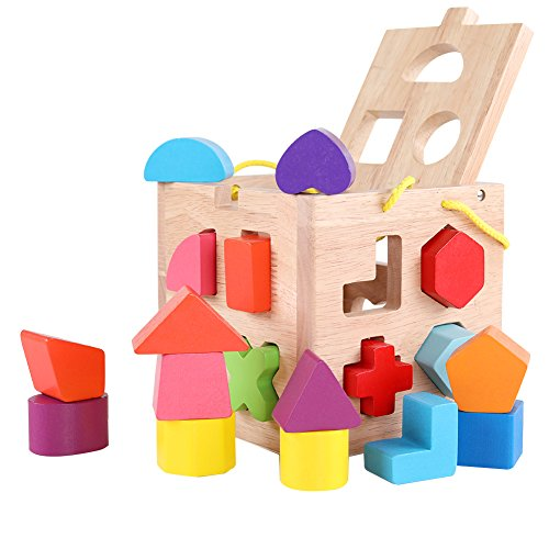 QZM Shape Sorter Toy with 19 Holes My First Wooden Toys Shapes and 12 Color Solid Wood Geometric Shape Puzzle Pieces Matching and Sorting for Toddlers - Learning and Educational Toys for Kids by QZM woden toys