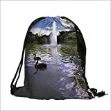 Pocket Drawstring Bag Swans and ducks in fine lake with a fountain in park Buen Retiro Backpack Student Bag 13''W x 18''H