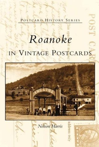 Roanoke in Vintage Postcards   (VA)  (Postcard History - Va Stores Roanoke In