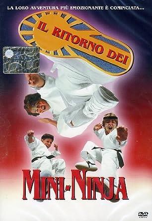 Amazon.com: Il Ritorno Dei Mini Ninja: victor wong, charles ...