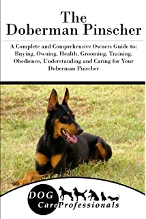 Doberman puppy training age