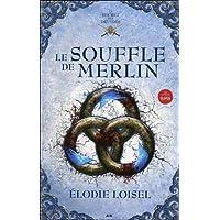Le secret des druides, tome 3 - Le souffle de Merlin