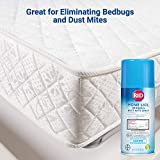 RID Home Lice, Bed Bug & Dust Mite Spray, Home