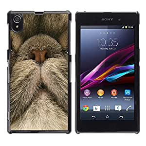 Vortex Accessory Carcasa Protectora Para Sony Xperia Z1 L39 C6902 C6903 C6906 C6916 C6943 - Persian Cat Nose Cute Kitten Kitty -
