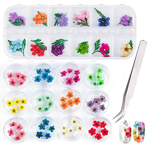 Dried Flowers 3D Nail Art Sticker(12 Colors), Natural Real Dry Flowers for Nails, Nail Design Kit Flower Decorations, Professional Decals Accessory Nail Art Accessories, Nail Stickers Manicure Set