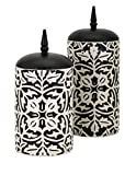 Imax 95796-2 Nola Canisters, Set of 2