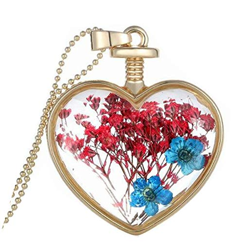 Hmlai Women Dry Flower Heart Glass Wishing Bottle Pendant Necklace Mother's Day Jewelry Gift (C)