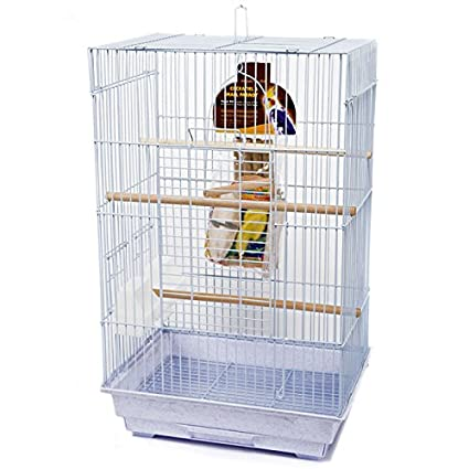 ec82b3b485276 Penn Plax Bird Cage Starter Kit, Cage With Toys, Treats, Games, Ladder, and  Wood Perch for Medium Sized Birds