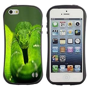 "Pulsar iFace Series Tpu silicona Carcasa Funda Case para Apple iPhone SE / iPhone 5 / iPhone 5S , Serpiente Verde Naturaleza Selva Reptil cola"""