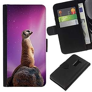 NEECELL GIFT forCITY // Billetera de cuero Caso Cubierta de protección Carcasa / Leather Wallet Case for LG G2 D800 // Espacio Galaxy Meerkat