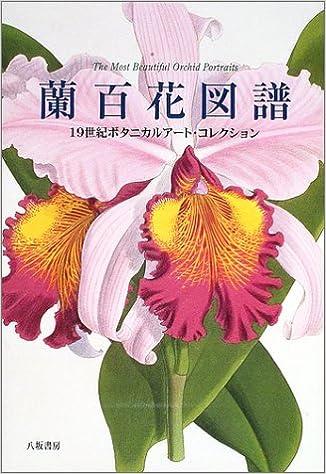 蘭百花図譜―19世紀ボタニカルア...