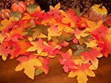 1000 Fall Silk Leaves Wedding Favor Autumn Maple Leaf Decorations