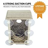 Wooden Bird Nest Box by PetsN'all | Clear View Window Bird Nest for Bird Watching | Heavy-Duty Suction Cups, Angled Roof, Drainage Holes