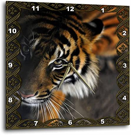 3dRose 3D Rose Beautiful Bengal Tiger Print and Frame-Wall Clock, 13-inch DPP_108066_2
