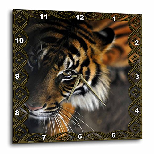 3dRose dpp_108066_3 Beautiful Bengal Tiger Print and Frame Wall Clock, 15 by 15-Inch
