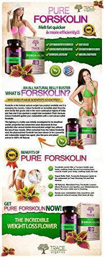 WANT-TO-LOSE-WEIGHT-FAST-Try-Pure-Forskolin-Extract-DIET-PILLS-Weight-Loss-Supplement-Appetite-Suppressant-Burns-Belly-Fat