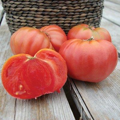 1/8 Gram Organic Seeds of Chianti Rose Tomato Organic