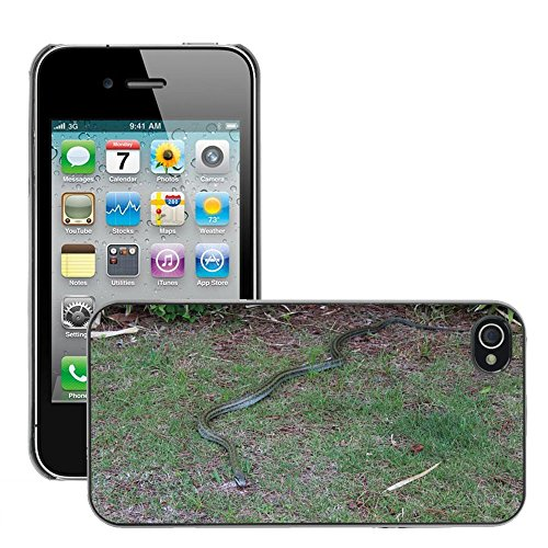 Bild Hart Handy Schwarz Schutz Case Cover Schale Etui // M00135278 Snake seminiferi Gras Tier // Apple iPhone 4 4S 4G