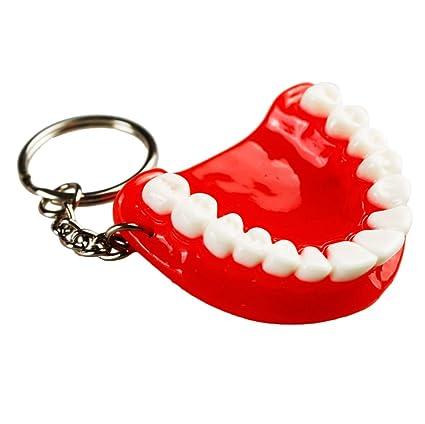 Earlywish 5pcs Llavero Cadena Dentistas dentales Dentista ...