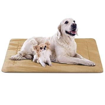 Amazon.com: JoicyCo - Colchón para cama de perro, tamaño ...