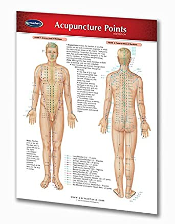 Amazon com acupuncture points chart guide medical quick reference