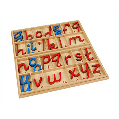 Montessori Language Large D Nealian Moveable Alphabet with Box