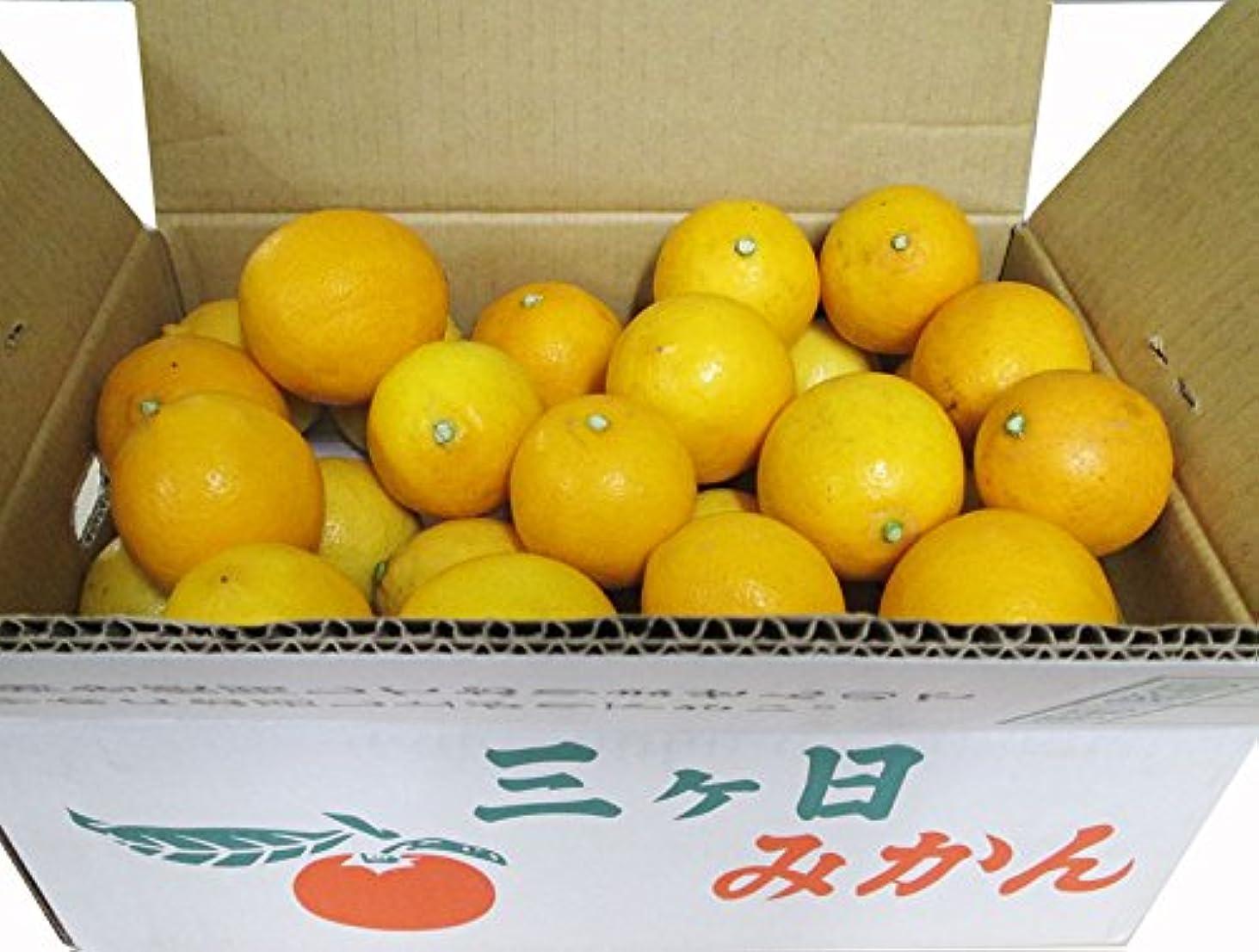 上陸選択真っ逆さまメキシコ産 フレッシュ キーライム (  中南米 レモン / ライム  ) 1.5kg