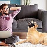 BINGPET Dog Muzzle for Medium Large Dogs