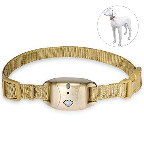 Cheap Petacc Dog Bark Collar Static Bark Control Dog Training Collar Auto-ultrasonic Bark Collar for Healthy Dogs, Champagne Gold