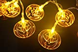 WISH HALLY WOOD solar Orange Pumpkin Halloween Decoration Lights Operated LED Fairy String Lights for Party,home (30 Orange Pumpkin)