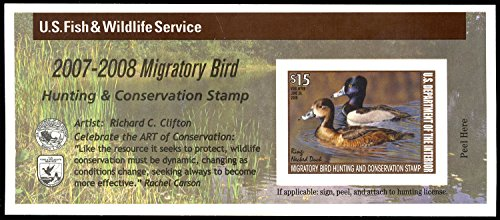 2007 $15 Ring-Necked Duck Federal Duck Stamp Self Adhesive Pane Scott RW74A By USPS